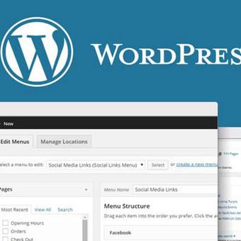 WordPress Tinklalapių Kūrimas / WordPress123 / Darbų pavyzdys ID 431255