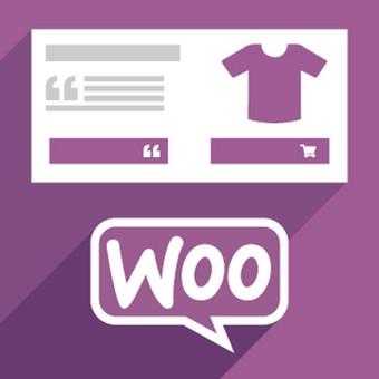 WordPress Tinklalapių Kūrimas / WordPress123 / Darbų pavyzdys ID 431267