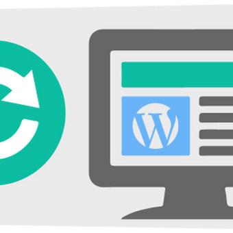 WordPress Tinklalapių Kūrimas / WordPress123 / Darbų pavyzdys ID 431269