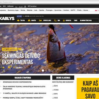Aktyvaus laisvalaikio ir žvejybos portalo kablys.delfi.lt redaktorės pozicija nuo 2014 iki 2015.