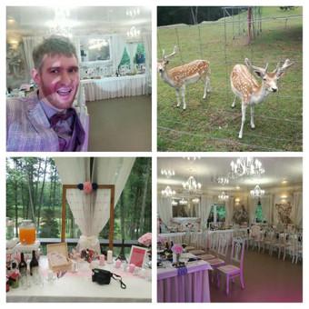 Vestuvių ir renginių vedėjas Donatas Šimkus / Donatas Šimkus / Darbų pavyzdys ID 449043