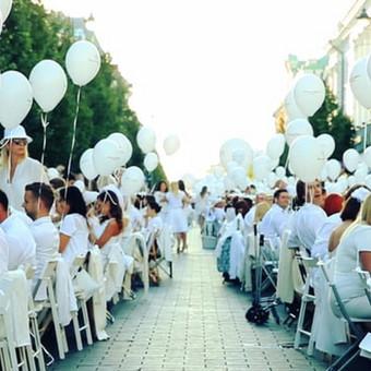 Projektas - Dîner en Blanc - Vilnius