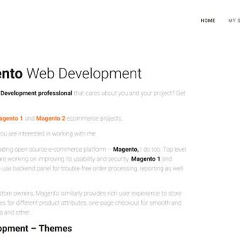 Reprezentacinis puslapis sukurtas ant WordPress turinio valdymo sistemos, temos modifikacija, SSL, Google Recaptcha