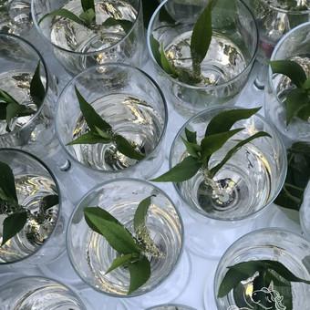 Šampano arba užkandžių staliukas Rapolas gali atkeliauti į bet kurią jūsų norimą vietą, atkeliauti vienas arba atvykti su spurgų siena Barbora, Išdidžiuoju rėmu, saldžiaisiais debesėl ...