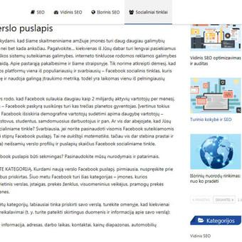 Tekstų kūrėja, redaktorė, rašto darbų konsultantė / Inesa / Darbų pavyzdys ID 452499