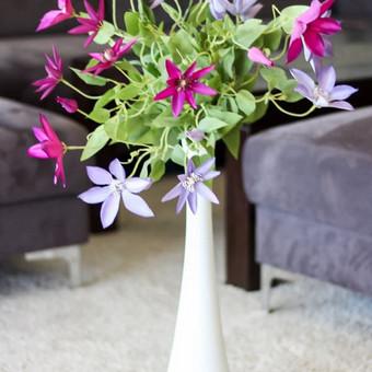 Šampano staliukas, gėlių fotosienos švenčių dekoracijų nuoma / Jurga / Darbų pavyzdys ID 453427