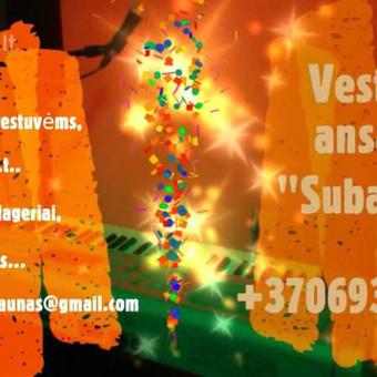 Gyva muzika jūsų šventei (vestuvėms, jubiliejams, vakarėliams ir t.t.),