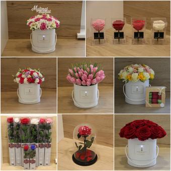 Memelio gėlės / Silvija / Darbų pavyzdys ID 454571