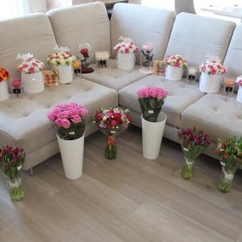 Memelio gėlės / Silvija / Darbų pavyzdys ID 454575