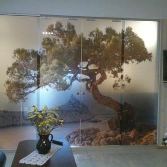 Plėvelės klijavimas, stiklo sienelės / Stiklo Spalvos / Darbų pavyzdys ID 67755