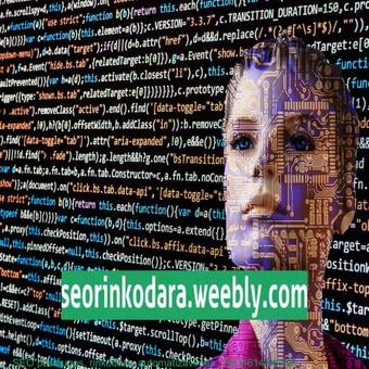 Internetinio verslo ir pardavimų konsultantas, SEO rinkodara / Mindaugas Vaitkus / Darbų pavyzdys ID 455937
