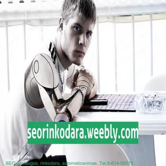 Internetinio verslo ir pardavimų konsultantas, SEO rinkodara / Mindaugas Vaitkus / Darbų pavyzdys ID 455953