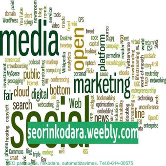 Internetinio verslo ir pardavimų konsultantas, SEO rinkodara / Mindaugas Vaitkus / Darbų pavyzdys ID 455977