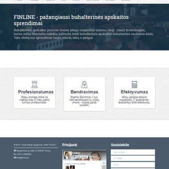 Sėkmingų interneto svetainių kūrimas / ETA komunikacija / Darbų pavyzdys ID 456657