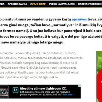 Straipsnis apie nuotykius gamtoje. kablys.delfi.lt/zvejo-deze/pasidaryk-pats/siemet-busiu-muselininku-vieno-kedzio-istorija.d?id=74199222