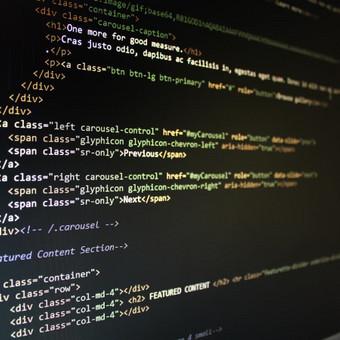 Vitalij Michno. Wordpress svetainių kūrimo kaina nuo 250€ / Vitalij Michno / Darbų pavyzdys ID 459351