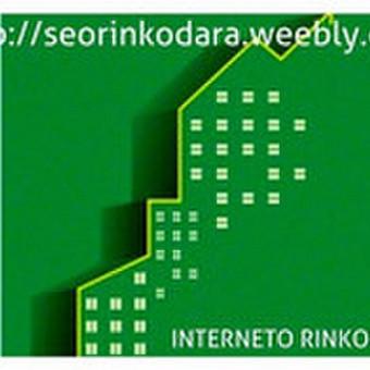 Internetinio verslo ir pardavimų konsultantas, SEO rinkodara / Mindaugas Vaitkus / Darbų pavyzdys ID 461427