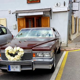 Tobulas Cadillac ir kiti / Pirmyn į praeitį / Darbų pavyzdys ID 464273