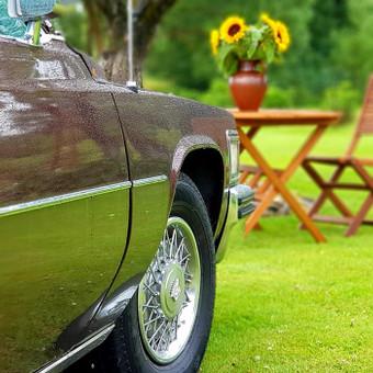Tobulas Cadillac ir kiti / Pirmyn į praeitį / Darbų pavyzdys ID 464745
