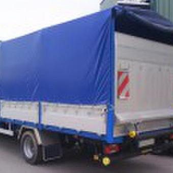 Krovinių transportavimas LT-EU/ EU-LT / Neldis UAB / Darbų pavyzdys ID 465417
