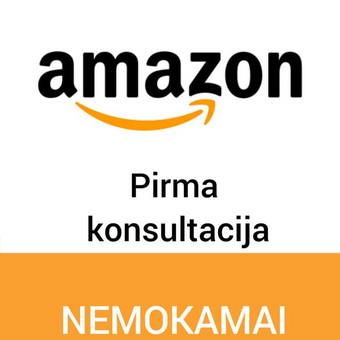 Konsultacija Amazon verslo klausimais / Gabija Bagdonaitė / Darbų pavyzdys ID 465863
