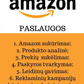 Konsultacija Amazon verslo klausimais / Gabija Bagdonaitė / Darbų pavyzdys ID 465883