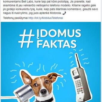 Socialinių tinklų marketingas ir turinio kūrimas / Evaldas Činga / Darbų pavyzdys ID 466733