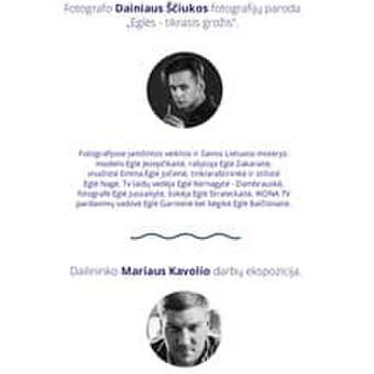 DESIGN / Algirdas Arlauskas / Darbų pavyzdys ID 469415