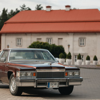 Tobulas Cadillac ir kiti / Pirmyn į praeitį / Darbų pavyzdys ID 471075