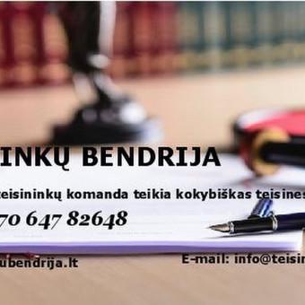 Profesionalių teisininkų komanda teikia teisines paslaugas / Teisininkų bendrija / Darbų pavyzdys ID 471211