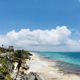 Kelionės į Meksiką / Inga Sev / Darbų pavyzdys ID 476309