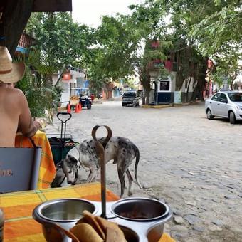Kelionės į Meksiką / Inga Sev / Darbų pavyzdys ID 476315