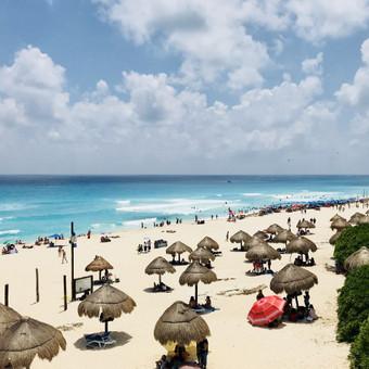Kelionės į Meksiką / Inga Sev / Darbų pavyzdys ID 476333
