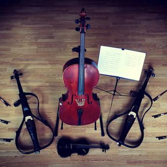 Proginiai Styginių instrumentų ansambliai / Tomas Mikalauskas / Darbų pavyzdys ID 477975