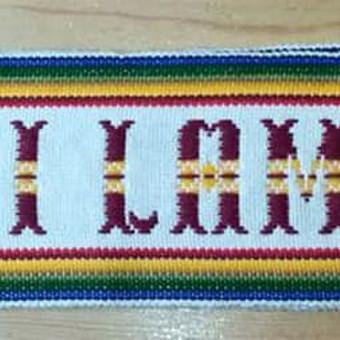 Juosta buvo skirta Jo Šventenybei Dalai Lamai.