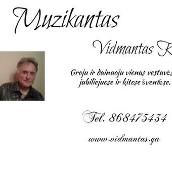 Muzikantas JŪSŲ šventei / Vidmantas Kokalas / Darbų pavyzdys ID 481549