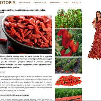 Turinio projektai verslui / Monika Žiūkaitė / Darbų pavyzdys ID 482039