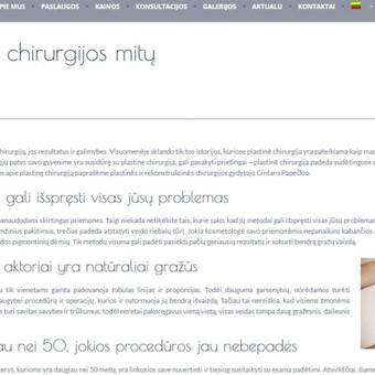 Turinio projektai verslui / Monika Žiūkaitė / Darbų pavyzdys ID 482043