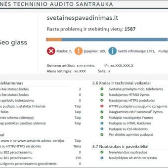 SEO Paslaugos. Svetainių SEO Optimizavimas ir Analizė. / SeoGlass / Darbų pavyzdys ID 482481