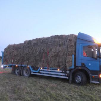 Krovinių gabenimas tech. pagalba iki 17t / Ignas Skučas / Darbų pavyzdys ID 486313
