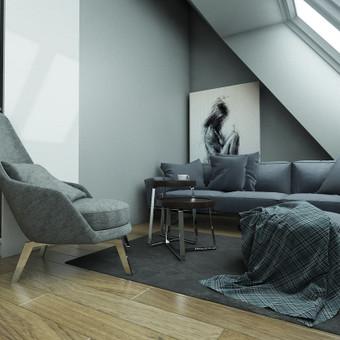 Interjero dizaineris / Mikas Vilutis / Darbų pavyzdys ID 491951