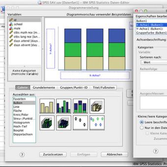 Duomenų suvedimas, tyrimai, analizė.  Kokybinių duomenų analizė SPSS programa.