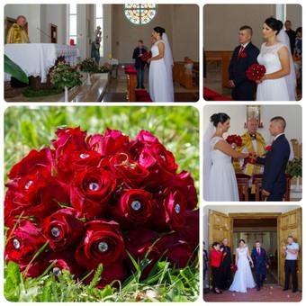 Fotografas / Renata Lisauskienė / Darbų pavyzdys ID 494271