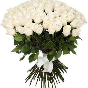 51 Baltos rožės