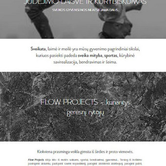Sukurta: svetainė, logotipas ir tekstai. www.flowprojects.lt