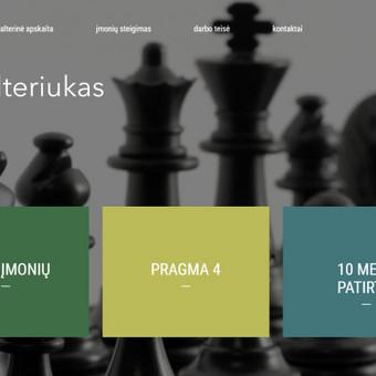 Interneto svetainių kūrimas Kaune / Tadas Dabulskis / Darbų pavyzdys ID 502895