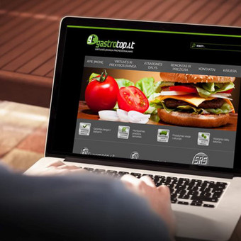 Interneto svetainių bei el. parduotuvių kūrimas / UAB Virtualus / Darbų pavyzdys ID 504429