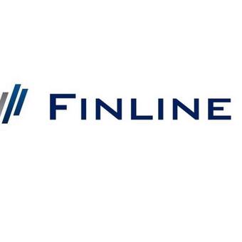 Buhalterinės apskaitos paslaugos 50 Eur / mėn / UAB FINLINE / Darbų pavyzdys ID 504707