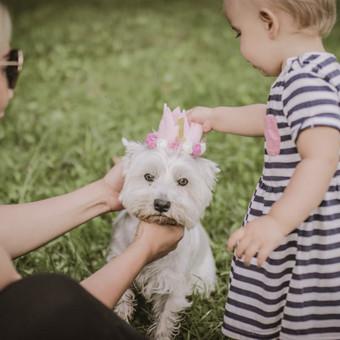 Vestuvių|krikštynų|asmeninė|poros|šeimos fotosesija / Dovilė Balčiūnaitė / Darbų pavyzdys ID 505671