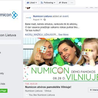 Reklamos paslaugos / Asta Jasiulionienė / Darbų pavyzdys ID 508699